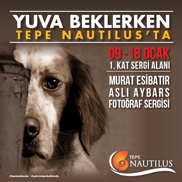 """Yuva Beklerken"" sergisi Tepe Nautilus'ta!"
